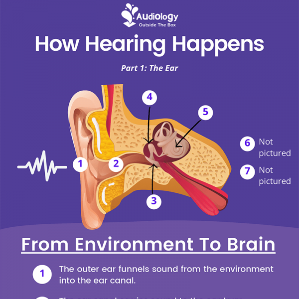 How Hearing Happens Part 1: The Ear