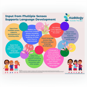 Input From Multiple Senses Supports Language Development